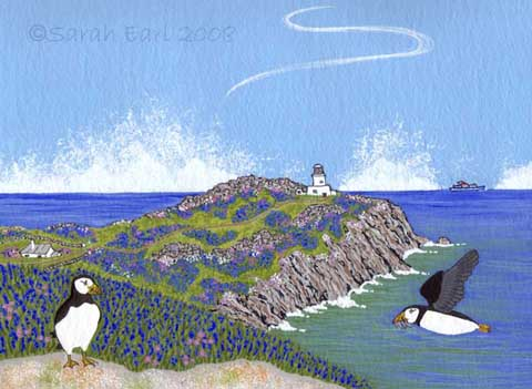 22 Puffins and Bluebells on Skokholm Island