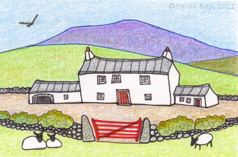 14 Sheep farm in the Preseli hills